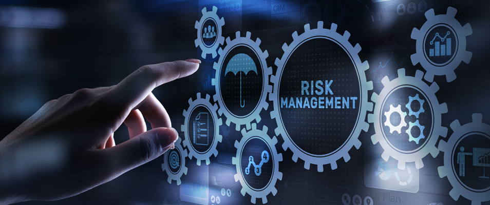 Commodore Finance   Investment Planning   Risk Management